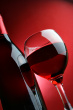 Wine Avatar